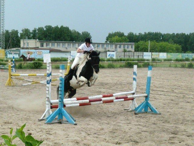 Кубок Урала -2015 по конным соревнованиям в Кургане.