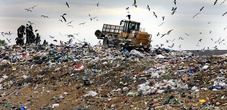Шуховской полигон отходов будут реконструировать, когда вывезут пестициды.