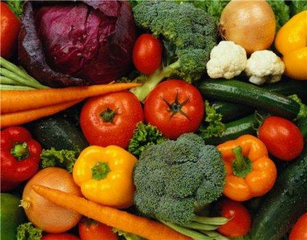 В Курганской области жители будут иметь заработок от урожая с огорода