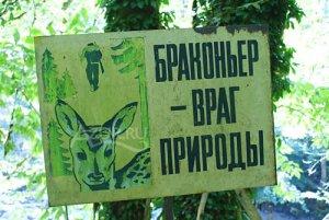 Операция «Браконьер» проведена в Шадринском районе