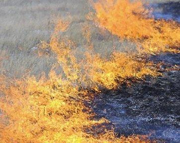 В Курганской области начался пожароопасный сезон, несмотря на недавнее наводнение