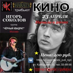 Игорь Соколов и группа