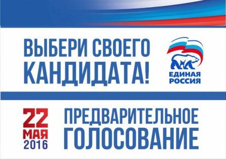 Процедура приема документов на предварительное голосование завершена в Шумихинском районе
