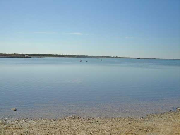 Благодаря работе ученых, жителей Кургана узнали о целебном уникальном озере, которое есть в области